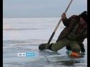 Невские моржи исследуют Столб огня посреди Байкала. Уникальные кадры снял на озере иркутский журналист, Вести-Иркутск