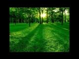 1) экспрес метод обучения самогипнозу 11 03 2014