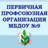 ПРОФСОЮЗНАЯ ОРГАНИЗАЦИЯ МБДОУ № 9