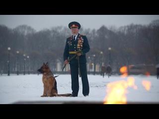 Видеообращение к президенту Российской Федерации