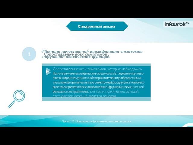 Нейропсихологическое сопровождение логопедической деятельности | Видеолекции | Инфоурок