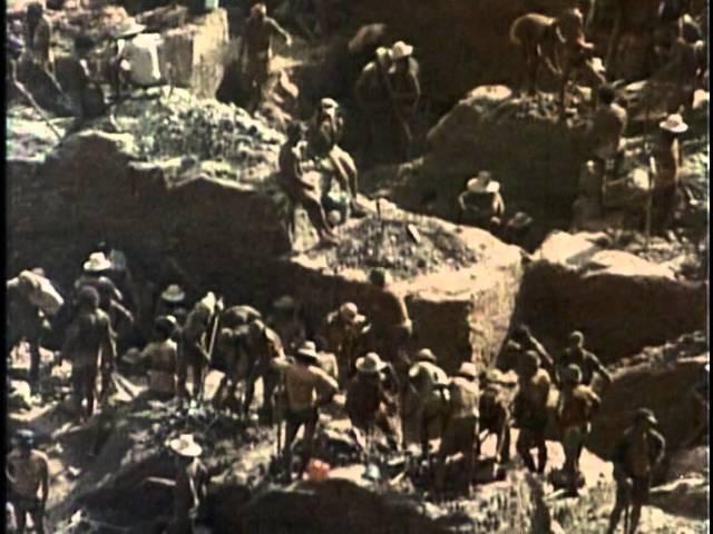 7 - Одиссея Жака Кусто - Золотая река 7 - jlbcctz ;frf recnj - pjkjnfz htrf