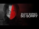 bucky barnes so sorry