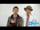 荒木宏文&柳下大(D-BOYS)が、Dステ16th×TSミュージカルファンデーション『GARANTIDO』の見どころを語る!