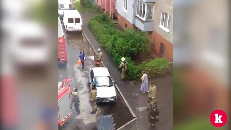 В Калининграде дознаватель МЧС вынес из задымлённой квартиры йоркширского терьера