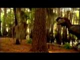 Динозавры. Поле битвы. Затерянные миры. Документальный фильм