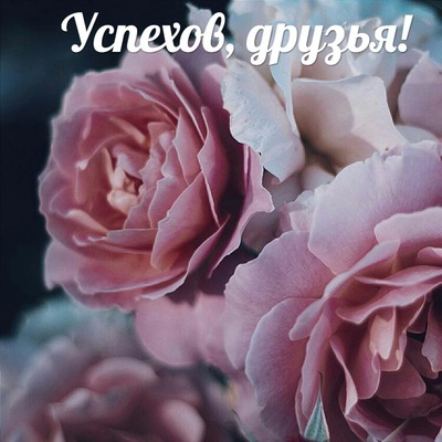 Ольга Раевская