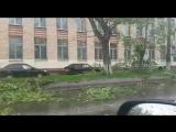 Ураган в Москве 29.05.2017 1