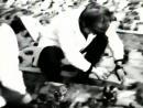 Без срока давности Укркинохроника 1981г