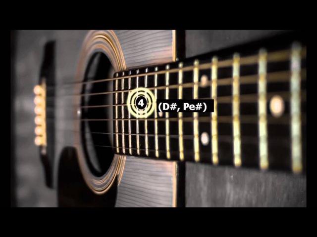 Гитара 6 Струн. строй Ми Диез На полтона ниже. Тюнер. Настройка гитары
