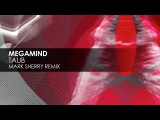 Megamind - Taub (Mark Sherry Remix)