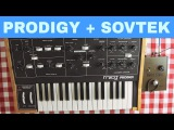 MOOG PRODIGY + SOVTEK EHX SMALL STONE ~ Will They Pair Ep.19
