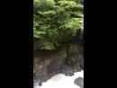 Горные реки Абхазии
