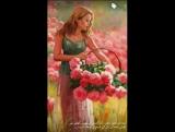 (8) Ahmed Bilal Qadir_2