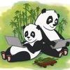 Заметки Панды