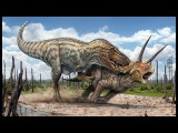 The largest dinosaurs ever lived