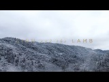 Lion And The Lamb Leeland Have It All Official Lyric Video