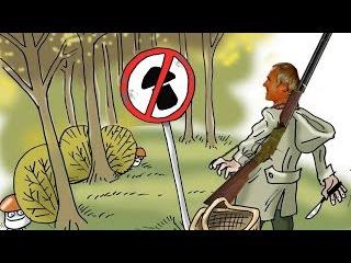 налог за сбор грибов и ягод в 2017 в России и штрафы если нет лицензии