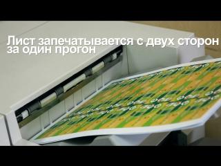 Изготовление двусторонних визиток