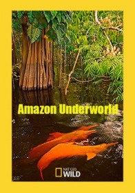 Скрытый мир Амазонки / Amazon Underworld (2016)