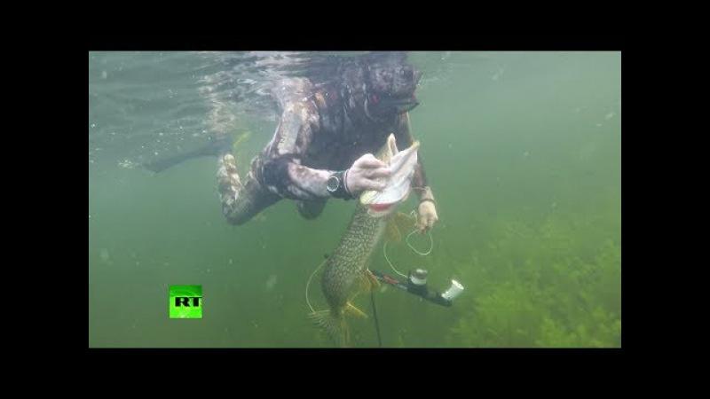 Первые кадры подводной охоты Владимира Путина на щуку в Туве