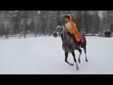Соревнование по конкуру Софья на Афине (horse jumping)