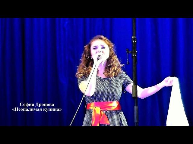 София Дронова - «Неопалимая купина»