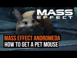 Mass Effect Andromeda - How to get a pet mouse