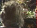 Screamin Jay Hawkins - Constipation Blues - Gainsbourg Tv 1983