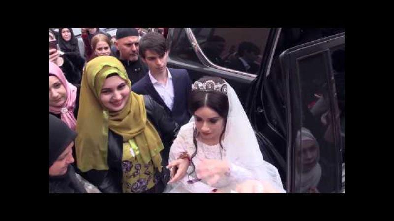Продолжение свадьбы Исраиловых, Невесту встречают. Студия Шархан