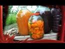 Как приготовить абрикосовую наливку 1часть.