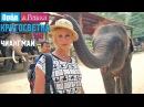 Орёл и Решка. Кругосветка - Чиангмай. Таиланд (1080p HD)