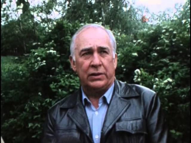Кинопанорама 1983 86