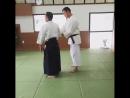 Tsuneo Ando Shihan 8 dan Aikido Yoshinkan