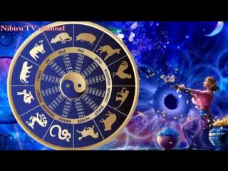 Гороскоп на 2017 год Огненного Петуха для всех знаков зодиака (1)