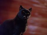 Сабрина маленькая ведьма 3 сезон 9 серия
