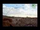 BBC Заповедник в дебрях Африки 12 серия Реальное ТВ животные 2005