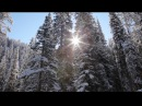 A Peaceful Snow Calming Nature Relaxation™ Video w Music