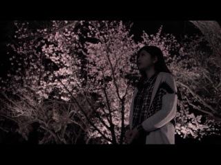 Kyoto(京都) × Miyuu vol.8 【二条城 Nijo-jo】 Talking To The Moon - Bruno Mars