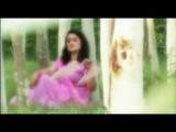Pashto  New song  AYMAN UDAS