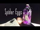 Spider Eggs DIY Potion Bottle Halloween Prop Harry Potter Inspired