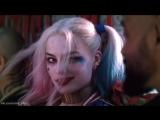 Harley Quinn / Suicide Squad // Харли Квинн / Отряд Самоубийц vine