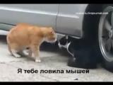 А поговорить..))