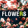 Flowers And