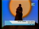 Peter Gabriel Kate Bush - Don't Give Up