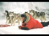 Белый плен  Eight Below (2006) 720HD [vk.comKinoFan]