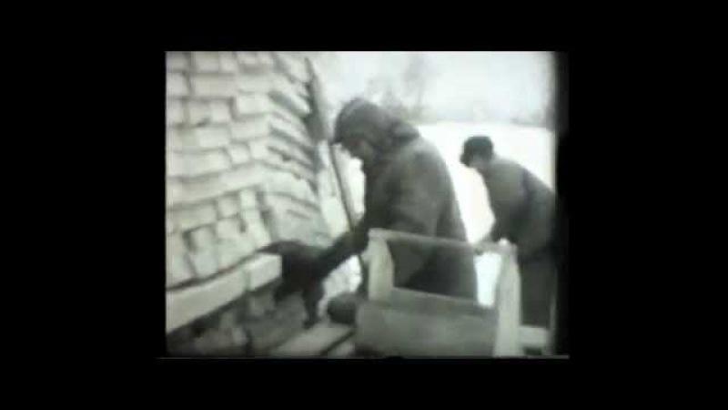 1986 (кіно) Будіництво житла для чорнобильців с Згурівка