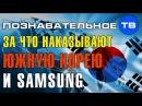 За что наказывают Южную Корею и Самсунг Познавательное ТВ, Артём Войтенков