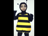 Пчелка Реги
