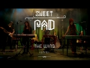 Sweet PAD - The wind (live performance 2016part 3)